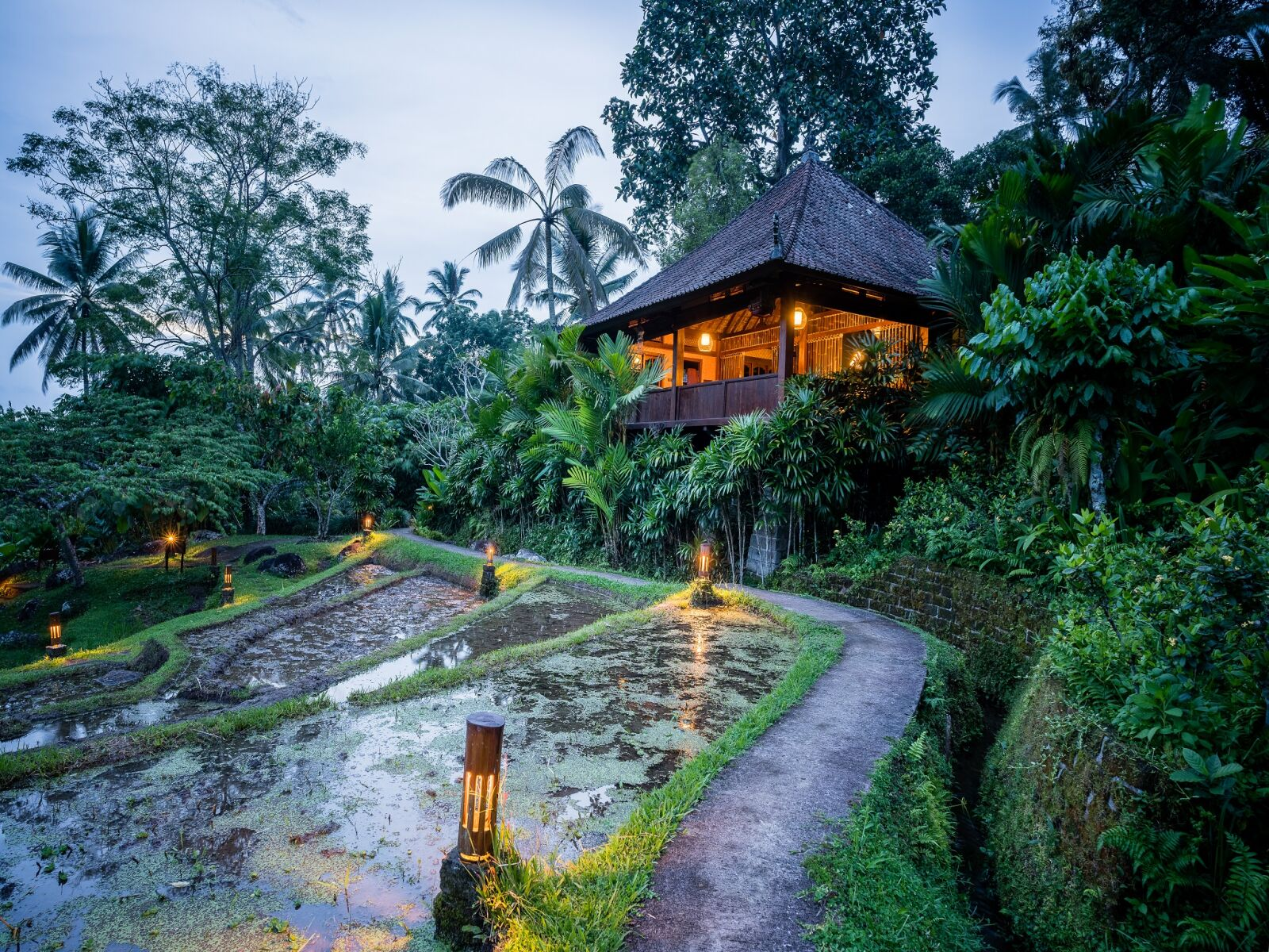 Raised bungalow at dusk with warm lighting, surrounded by trees and overlooking rice paddy