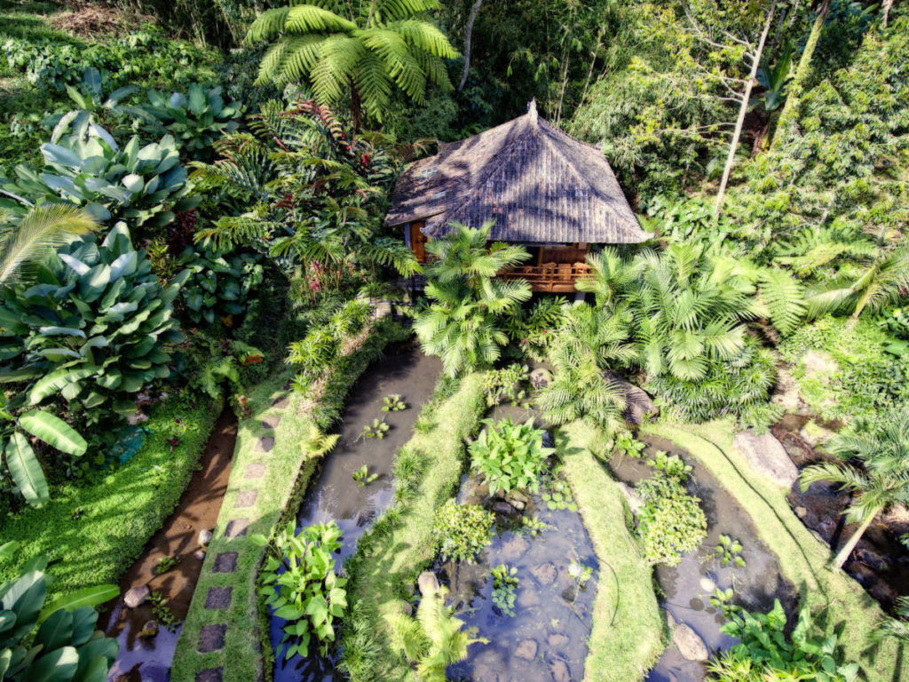 Aerial view of bungalow and jungle surroundings
